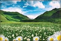 Фотообои Горная долина 294*201 (9 лист) Тула