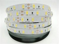 Лента светодиодная GLS-5050-60-14.4-12-IP65-6 холодный белый свет 5 метров General